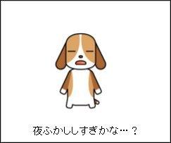20101201002.jpg