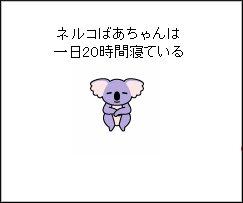 1029-1.jpg